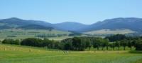 Panorama celých hor od Králík - Sněžník je uprostřed