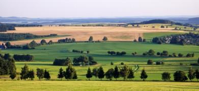 Vysočina u Nového Města na Moravě