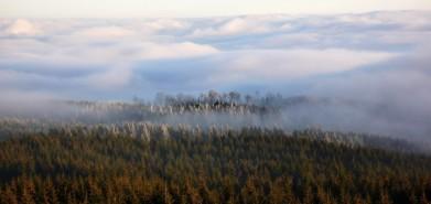 Lesy pod Krušnými horami, foceno z Meluzíny