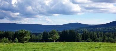 Šumava, v pozadí Poledník