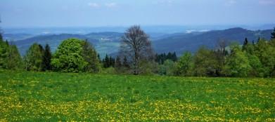 Z cesty k hradu, pohled do českého vnitrozemí