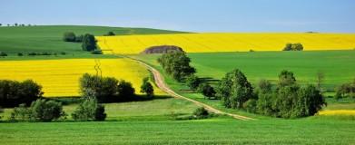 Moravské lány, ještě na Vysočině, nad Třebíčí