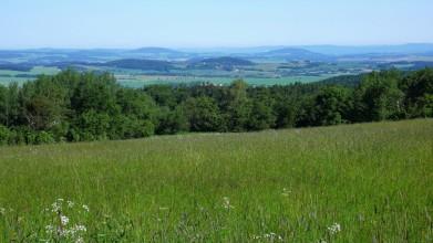 Od Kaliště pohled na Benešovsko, dva vrcholky v pozadí - ten vlevo je Neštětická hora u Konopiště