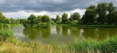 Rybník u NPR Bohdanečské rybníky