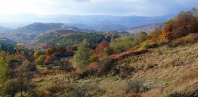 Doupovské hory, vojenský prostor Hradiště. Pohled na údolí Ohře a Krušné hory v pozadí.