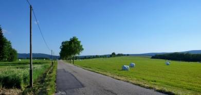 Cesta z Dolní Vltavice u Lipna