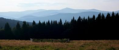 Východní část Krkonošů z louky kousek pod Rýchorskou boudou, ve výšce přes 900 metrů. Uprostřed je vidět nejvyšší bod Sněžka, vlevo vedle Studniční hora (1 554 m) a ještě víc vlevo Luční hora ( 1 556 m), což jsou tři nejvyšší hory Česka.