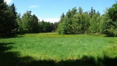 Někdejší plocha hřiště