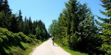 Cesta ze Smědavy k odbočce