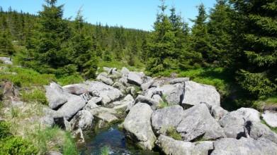 Potok u cesty před odbočkou k vrcholu