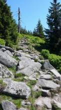 Pěšina k vrcholu