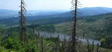 Plešné jezero ze stezky vedoucí k Plechému ( 1 378 m), v pozadí je vidět i kousek Lipna.