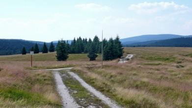 Cesta Velkou Jizerskou loukou