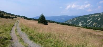 Cesta Luční bouda - Krakonoš, pohled na západ