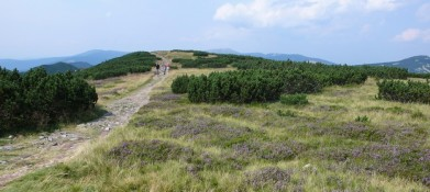 Cesta až k samotnému Krakonoši