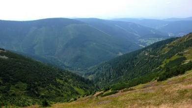 Údolí Svatopetrského potoka