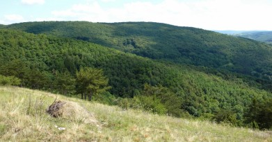 Pohled ze svahů nad Hostimí, kopce v okolí Doutnáče