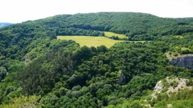 Protější osamělá louka při pohledu přes říčku Loděníce a její údolí - ze skal nad Hostimí