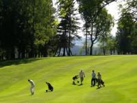 Nejlépe se golf hraje ve společnosti dalších hráčů, lze hrát ale i osamoceně.