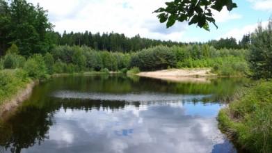 Jeden z četných rybníků hradeckých lesů