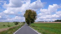 Volná silnice, kvalitní povrch, krásné počasí: ideální pro jízdu na kole.