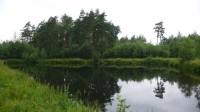 Malé nádrže v lese, poblíž klubovny