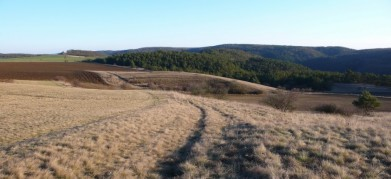 Mohelno na Moravě, hadcová step