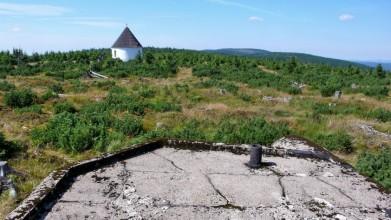 Řopík u Kunštátské kaple v Orlických horách, ve výšce 1 030 metrů