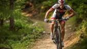 pic_29ercrosscountrymarathon_1200x600px
