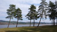 Pláže u Komárovského rybníka