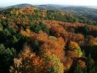 Podzimní pohled z věže na Jarníku