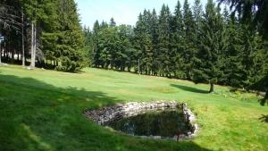golf11